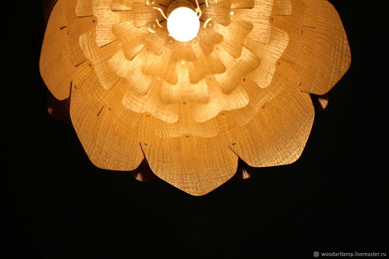 Светильники из шишек своими руками фото 637