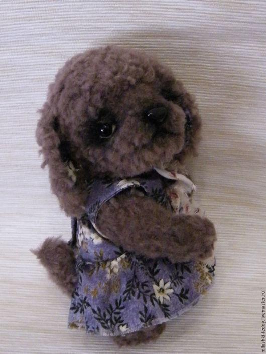 Мишки Тедди ручной работы. Ярмарка Мастеров - ручная работа. Купить собачка тедди Тамара. Handmade. Сиреневый, щенок тедди