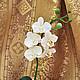 Цветы ручной работы. Заказать Орхидея фаленопсис из полимерной глины. Цветы ручной работы Виниченко Ольги. Ярмарка Мастеров.