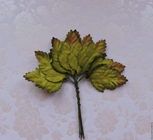 Открытки и скрапбукинг ручной работы. Ярмарка Мастеров - ручная работа. Купить Листья со стеблем резные 10 шт. Handmade.