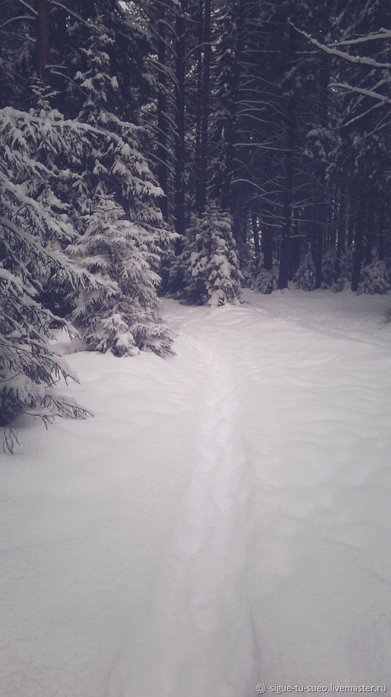 прекрасная зима, Фото, Екатеринбург,  Фото №1