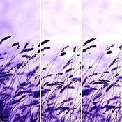 Картины и панно handmade. Livemaster - original item triptych in Purple color. Handmade.