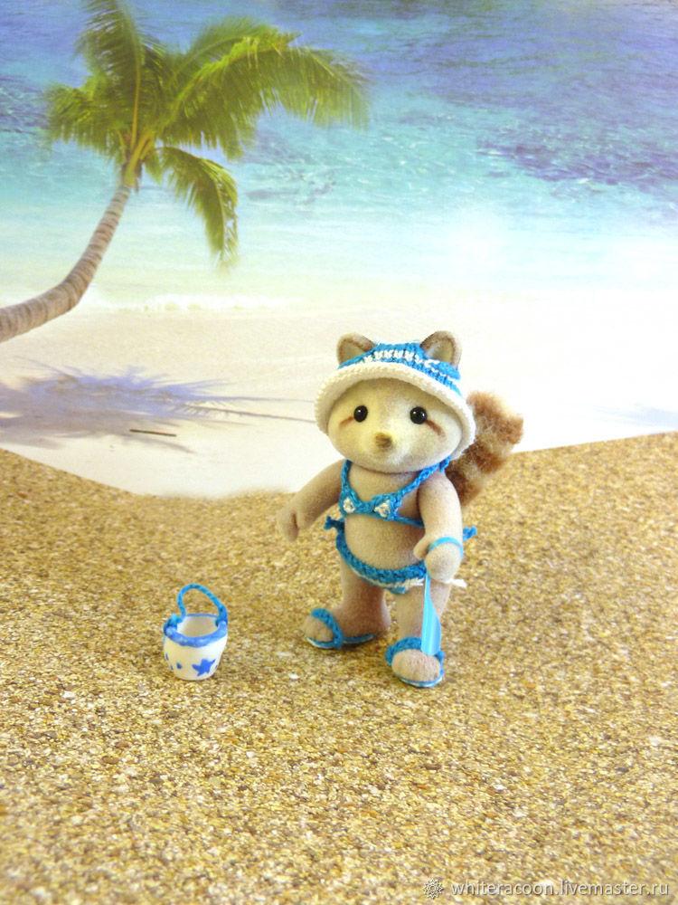 Raccoon on the beach, sea and sand!