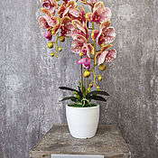 Композиции ручной работы. Ярмарка Мастеров - ручная работа Латексная орхидея в кашпо. Handmade.