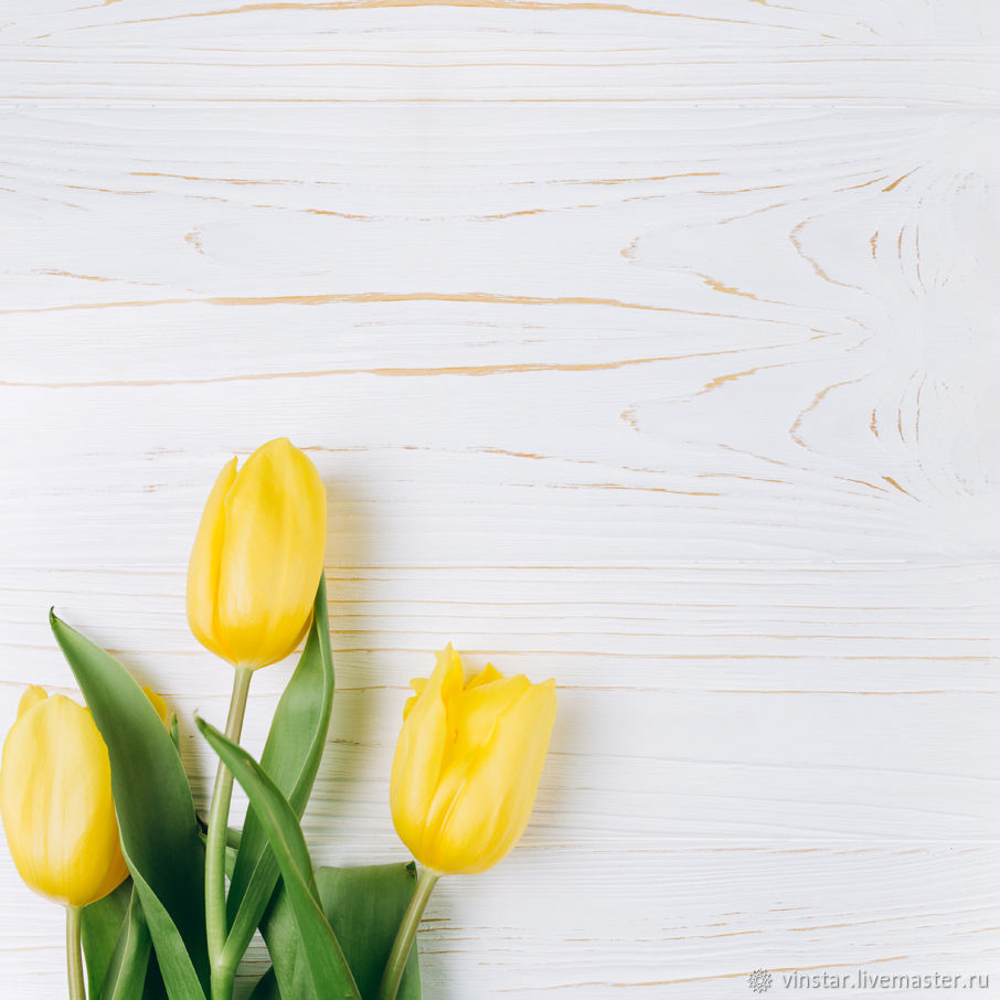 Фотофон виниловый Желтые тюльпаны, Фото, Курск,  Фото №1