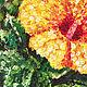 Картины цветов ручной работы. Жёлтый гибискус. Natalia Malinko. Интернет-магазин Ярмарка Мастеров. Гибискус, живопись маслом, флора