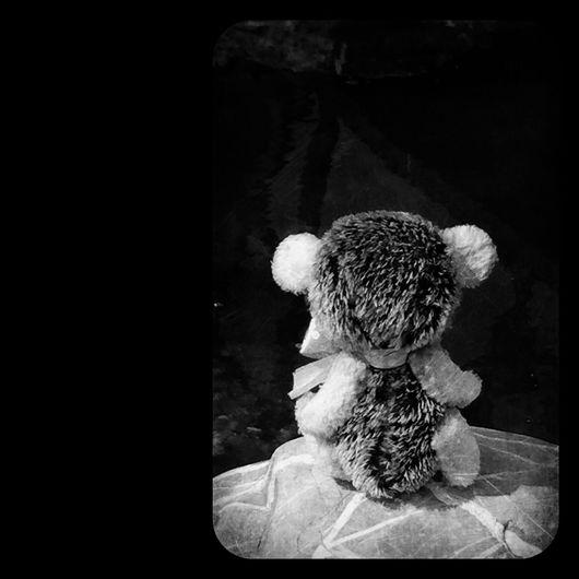 Мишки Тедди ручной работы. Ярмарка Мастеров - ручная работа. Купить Ёжичка Тася. Handmade. Ежик, тедди, интерьерная игрушка