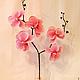 Цветы ручной работы. Заказать Голубая орхидея - керамическая флористика. Елена Тюрина. Ярмарка Мастеров. Оригинальный подарок, подарок подруге