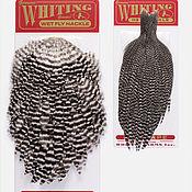 Материалы для творчества ручной работы. Ярмарка Мастеров - ручная работа Набор перьев Whiting Hen Cape and Saddle Set (92899001). Handmade.