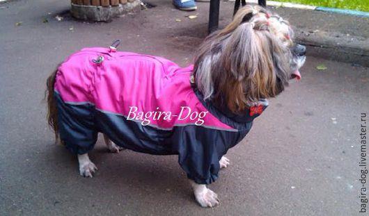 Одежда для собак, ручной работы. Ярмарка Мастеров - ручная работа. Купить Дождевики для Ши-тцу. Handmade. Ши-тцу