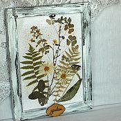 Картины и панно handmade. Livemaster - original item Vintage frame and herbarium of dried flowers. Handmade.