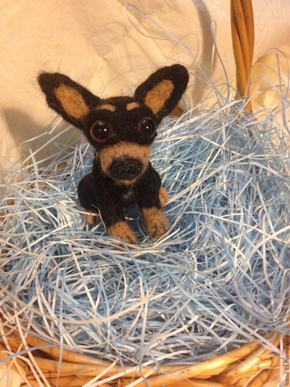 Animal Toys handmade. Livemaster - handmade. Buy Chihuaha.Gift, black, miniature, interior toy, photos, for dolls