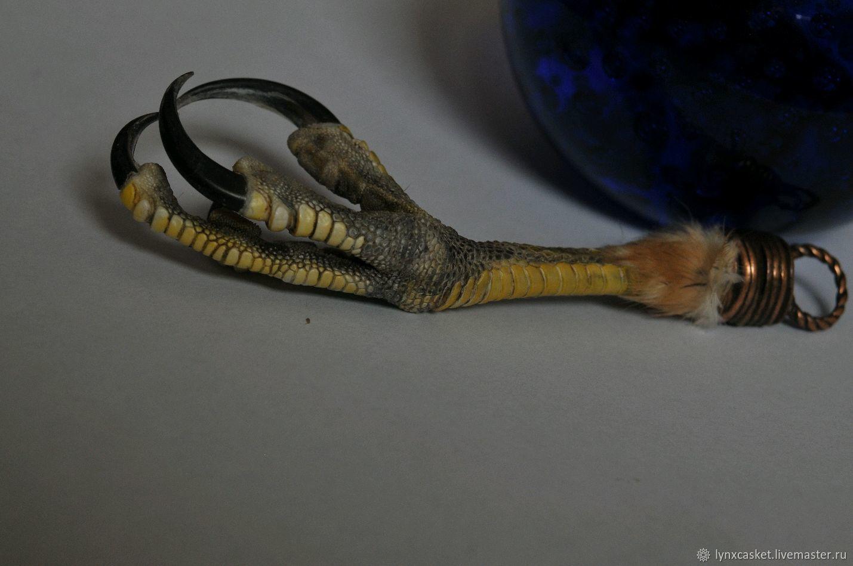 Pendant with a paw Goshawk, Amulet, Moscow,  Фото №1