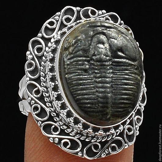 Кольца ручной работы. Ярмарка Мастеров - ручная работа. Купить Кольцо Трилобит окаменелый в серебре. Handmade. Серебро 925