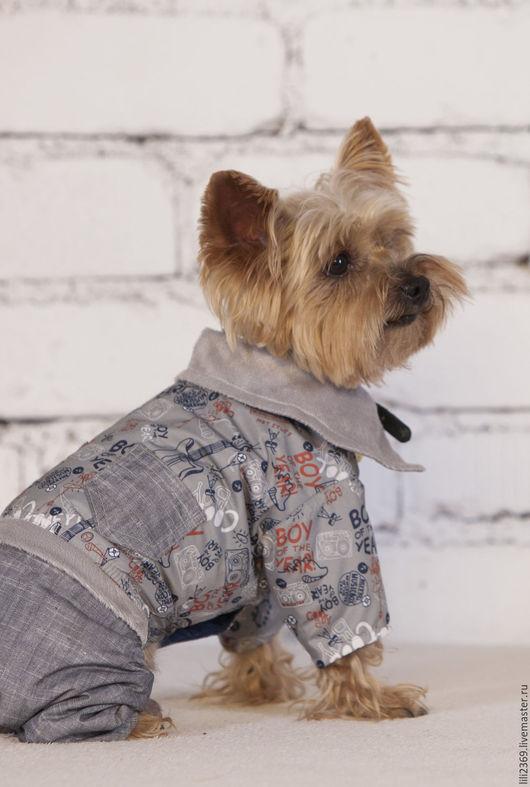 Одежда для собак, ручной работы. Ярмарка Мастеров - ручная работа. Купить Комбинезон для собаки BOY. Handmade. Комбинированный, одежда, йорк