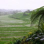 Картины и панно ручной работы. Ярмарка Мастеров - ручная работа Фотография Остров Бали. Handmade.