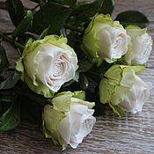 Цветы и флористика ручной работы. Ярмарка Мастеров - ручная работа Роза белая (холодный фарфор) Керамическая флористика. Handmade.