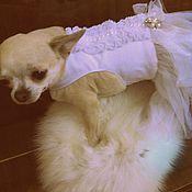 Для домашних животных, handmade. Livemaster - original item Bridesmaid dress. Handmade.