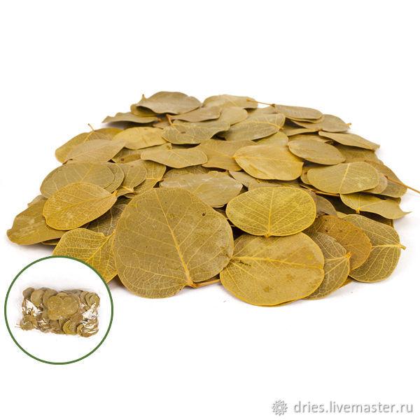 Материалы:  лист монетка жёлтый, , Москва, Фото №1