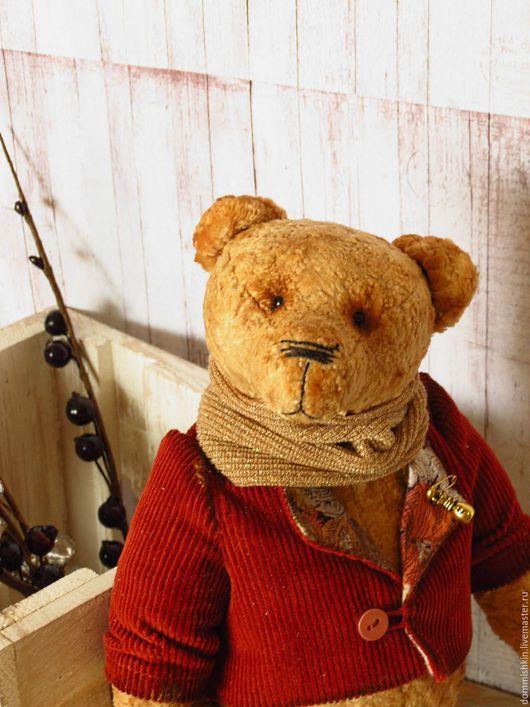 Мишки Тедди ручной работы. Ярмарка Мастеров - ручная работа. Купить Эркюль. Handmade. Комбинированный, мишка в пиджачке