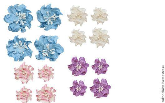 Цветы кудрявой фиалки. На фото представлены цвета (слева направо): - небесно-голубые  - белые -нежно -розовые -фиолетовые