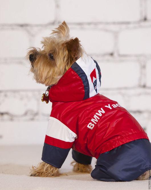 Одежда для собак, ручной работы. Ярмарка Мастеров - ручная работа. Купить Комбинезон для собаки ЯхтСпорт. Handmade. Комбинированный, комбинезон для собак