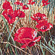 "Embroidered picture ""Poppy field"". Pictures. Cross stitch and beads!. My Livemaster. Фото №6"