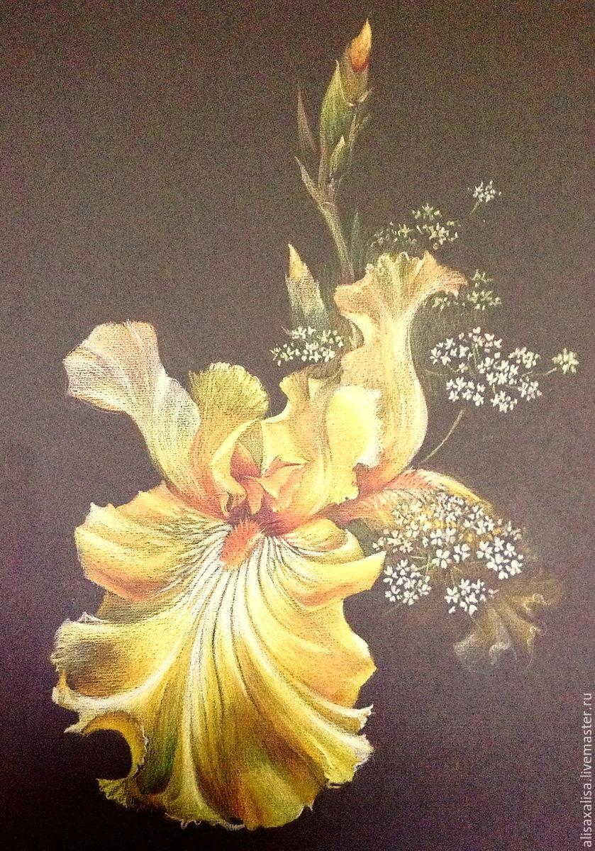 Желтый ирис, Картины цветов, Москва, Фото №1