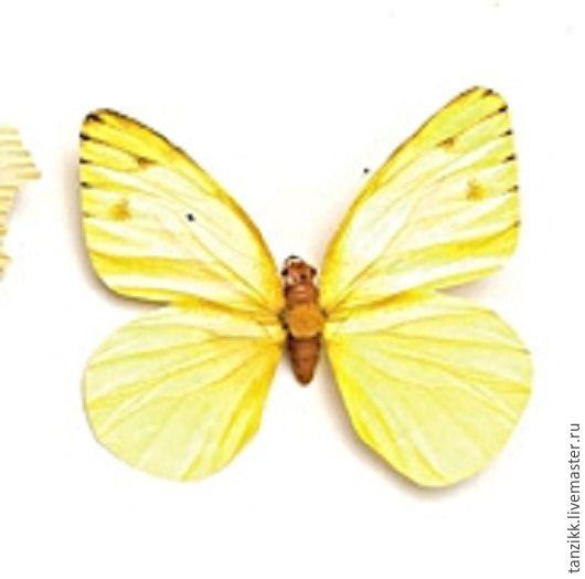 Материалы для флористики ручной работы. Ярмарка Мастеров - ручная работа. Купить Бабочка - декоративный элемент.. Handmade. Комбинированный, бабочка, бабочка