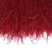 Материалы для творчества handmade. Livemaster - original item Trim of ostrich feathers 10-15 cm wine (dark red). Handmade.