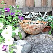 Дизайн и реклама handmade. Livemaster - original item Clay bowl. Handmade.