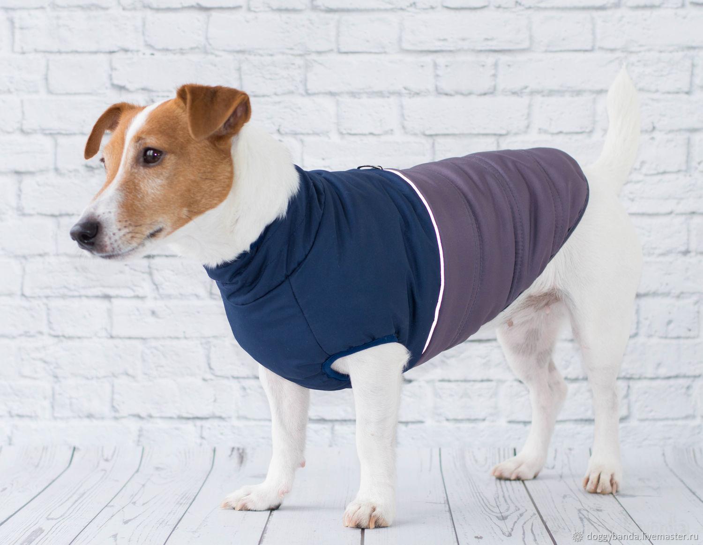 """Куртка - жилетка для собак """"Галактика"""", Одежда для собак, Москва, Фото №1"""