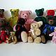 Order bear with blue bow. Vershybears (vershybears). Livemaster. . Stuffed Toys Фото №3