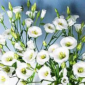 Цветы и флористика ручной работы. Ярмарка Мастеров - ручная работа Эустома (лизиантус)  из холодного фарфора. Handmade.