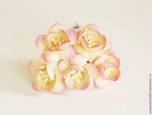 Открытки и скрапбукинг ручной работы. Ярмарка Мастеров - ручная работа. Купить Цветы вишни молочный+бледно-розовый, 5 шт.. Handmade.