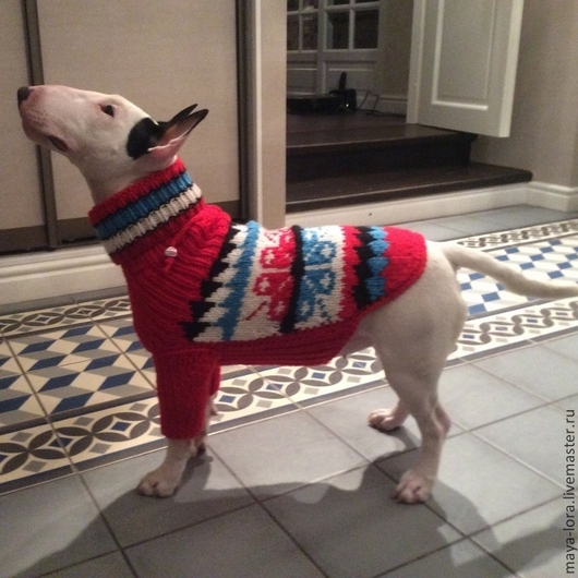 """Одежда для собак, ручной работы. Ярмарка Мастеров - ручная работа. Купить Одежда для собак. Свитер """"Теплый жаккард"""". Handmade. на заказ"""
