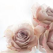 """Картины и панно ручной работы. Ярмарка Мастеров - ручная работа Постер / фотокартина """"Розы"""". Handmade."""