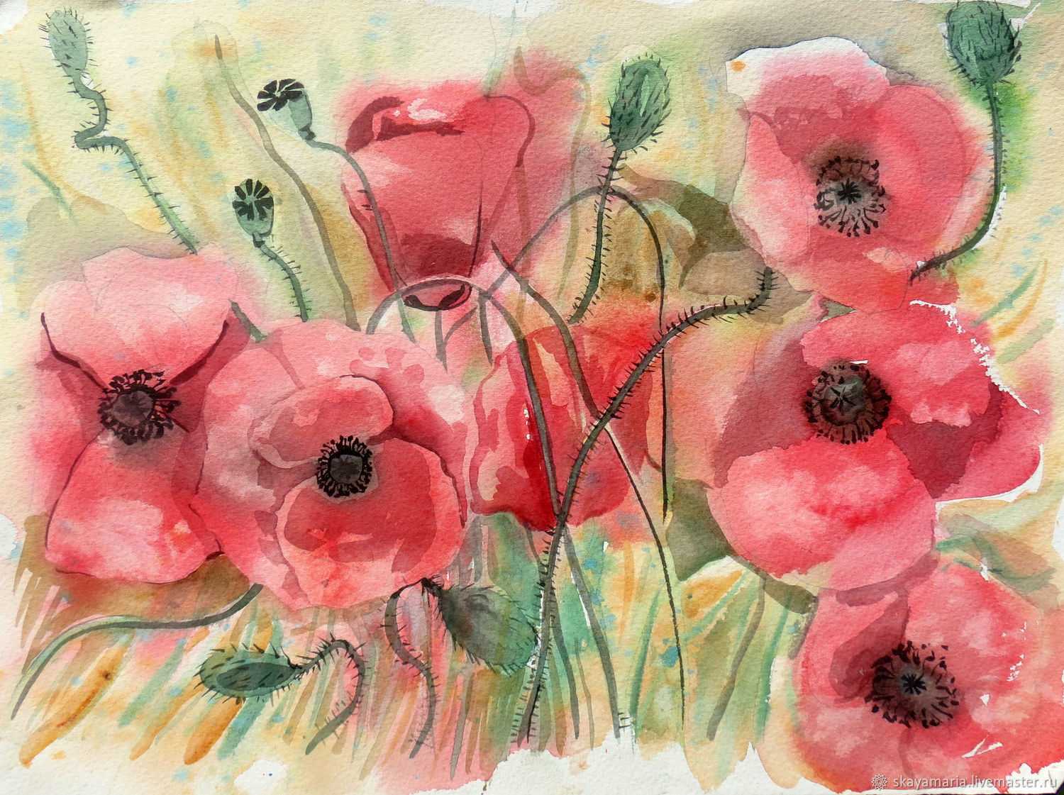 Sketch watercolor  Flowers of joy  Mac  Poppies red – shop online on  Livemaster with shipping - DBNZJCOM   Moscow