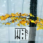 The White forest | Скетчбуки и духи - Ярмарка Мастеров - ручная работа, handmade