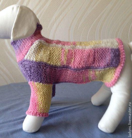 Одежда для собак, ручной работы. Ярмарка Мастеров - ручная работа. Купить Свитер радужный для маленькой собачки. Handmade. Комбинированный, полушерсть