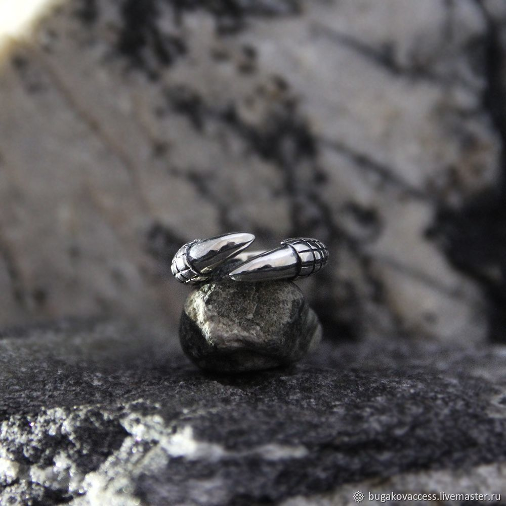 Claw Ring of silver 925, Rings, Moscow,  Фото №1