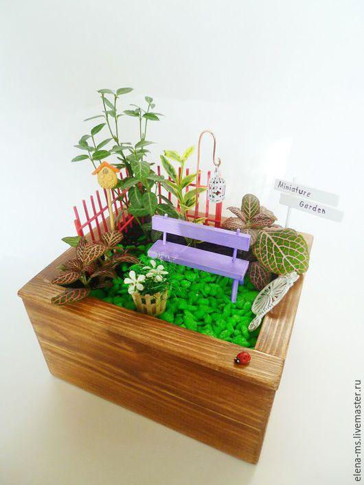 Персональные подарки ручной работы. Ярмарка Мастеров - ручная работа. Купить Маленький мини-садик в деревянном ящике. Handmade.