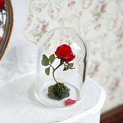 Куклы и игрушки handmade. Livemaster - original item Red rose on a scale of 1 to 12 under the dome. Handmade.