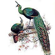 Подарки к праздникам ручной работы. Ярмарка Мастеров - ручная работа Красивые птицы. Handmade.