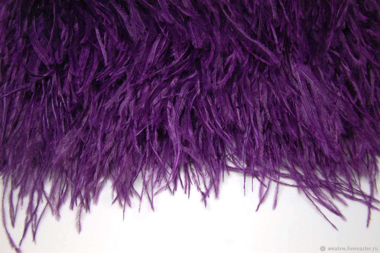 Trim of ostrich feathers 10-15 cm purple, braid, Moscow,  Фото №1