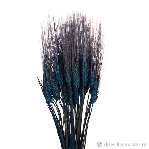 Материалы:  пшеница синяя, , Москва, Фото №1
