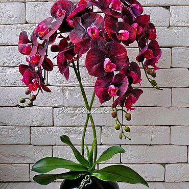 Цветы и флористика. Ярмарка Мастеров - ручная работа Орхидея фаленопсис, имитация живого растения. Handmade.