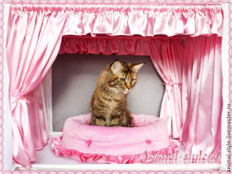 `Tenderness` the Design of exhibition tents for cats