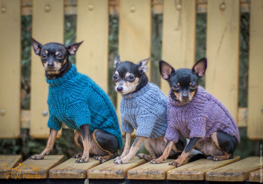 """Одежда для собак, ручной работы. Ярмарка Мастеров - ручная работа. Купить Одежда для собак. Свитер """"Бордо"""". Handmade. Одежда для собак"""