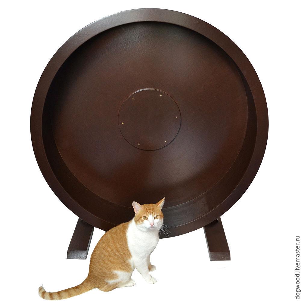 Беговое колесо для кошек. 100/30 см, Аксессуары для питомцев, Череповец,  Фото №1